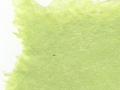 Chartreuse linen rag